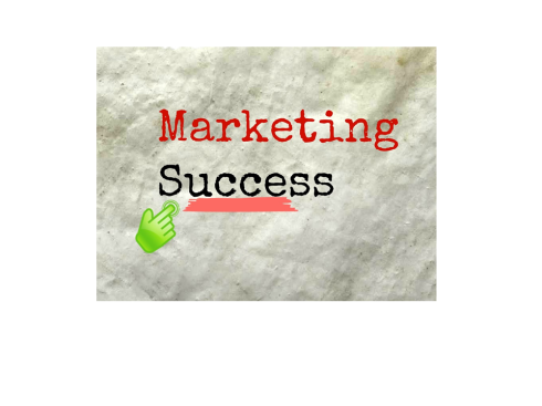 social-media-marketing-success